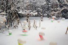 渋谷俊彦先生の作品 SNOW PALLET9が六菓亭札幌本店で開催中!