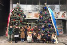☆★クリスマスディスプレイ完成★☆